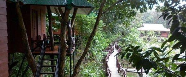 Bungalows at Khao Sok Paradise Resort